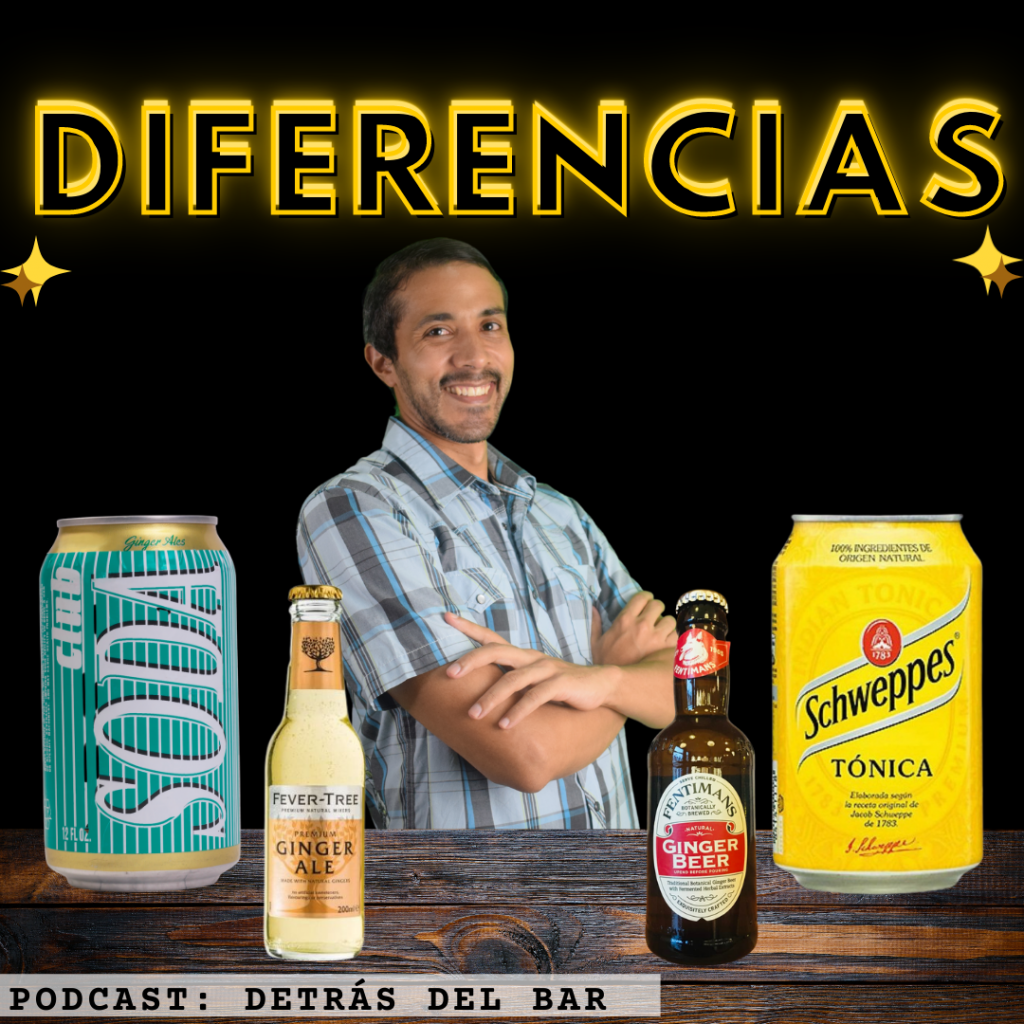 soda tonica ginger ale y ginger beer